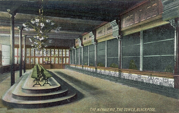 The Menagerie, Blackpool Tower c1904.