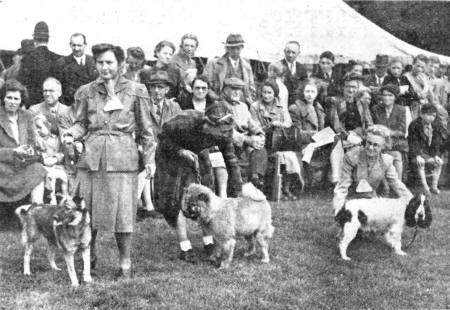 Lytham St.Annes Agricultural Show at Lytham Hall Park, August 1946.
