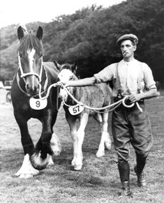Tom Worthing of Peel Hall Farm, near Blackpool at Lytham St.Annes Agricultural Show, 1938.