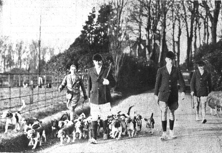 Photo of the Oakenclough Hounds with the Master (Harold Jackson Jnr.), leaving the grounds of The Villa on the occasion of their annual run in the Wrea Green district,1935.