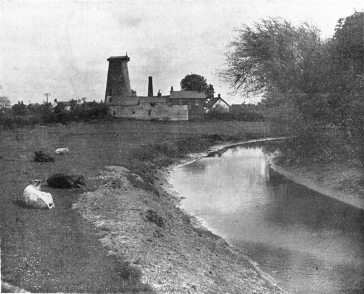 Photograph of Pilling Windmill in 1930.