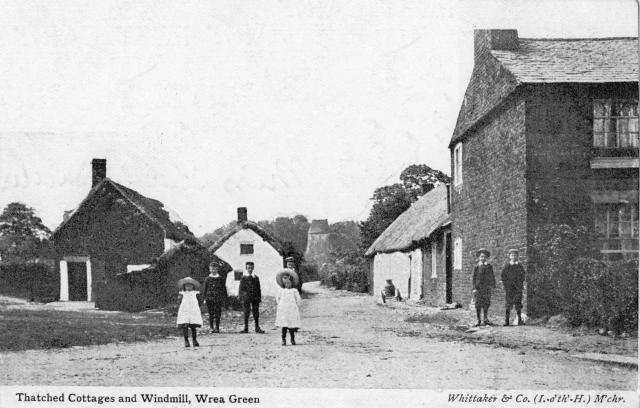 A view of the thatched cottages and windmill at Wrea Green c1904.